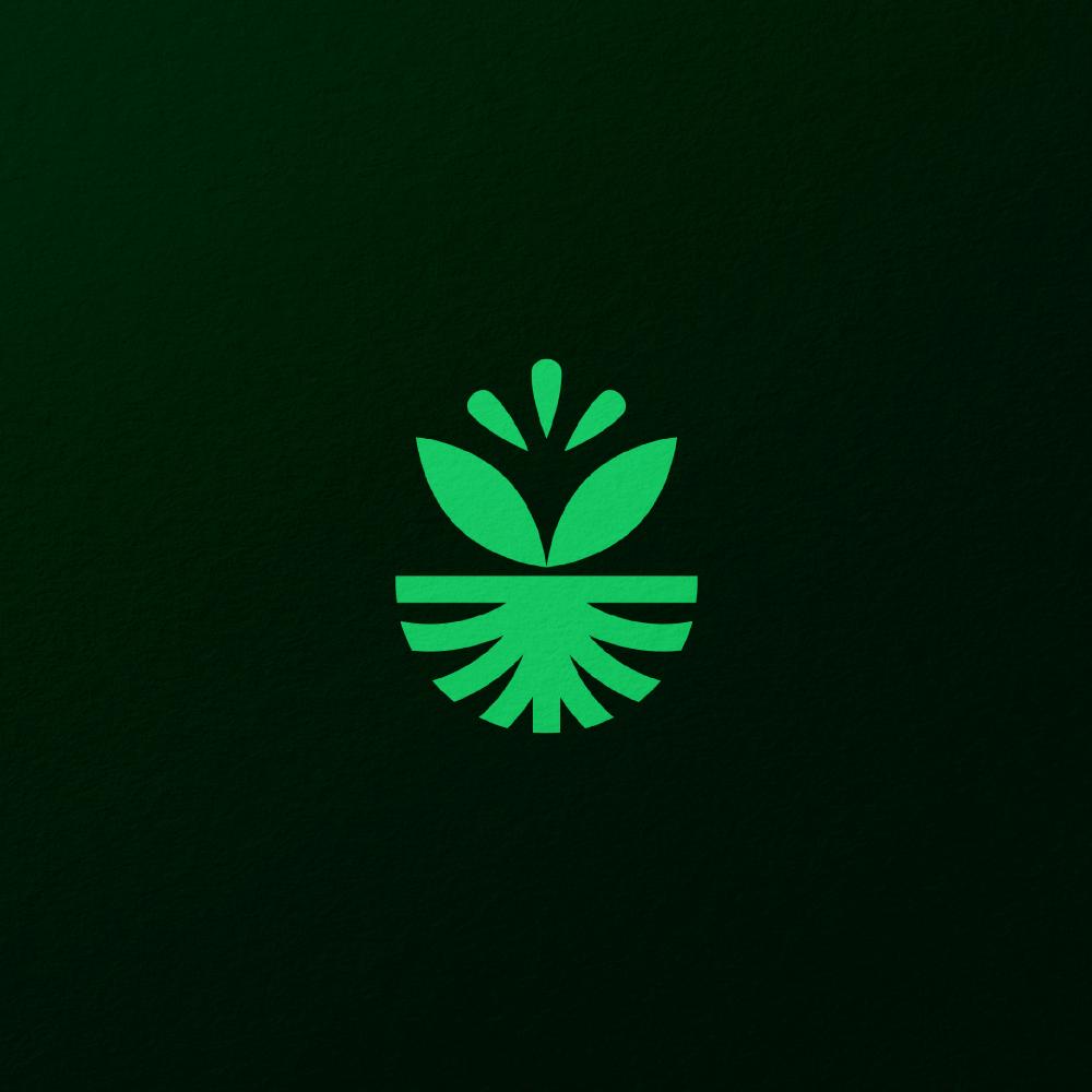 Huerto – Fruto de la tierra