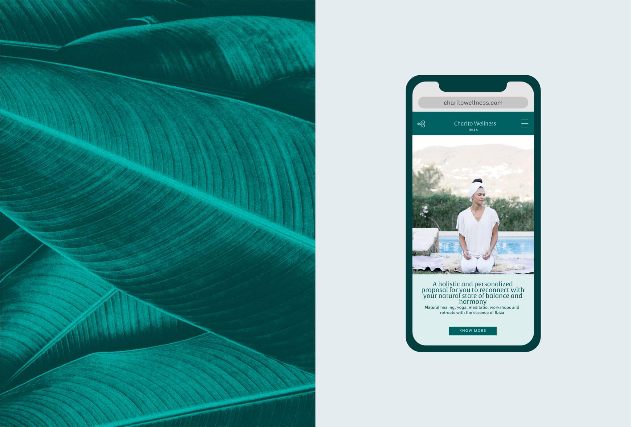 Charito Wellness | Web Site
